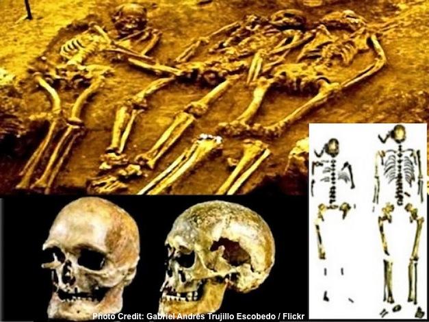 Genome-Neanderthals-DNA