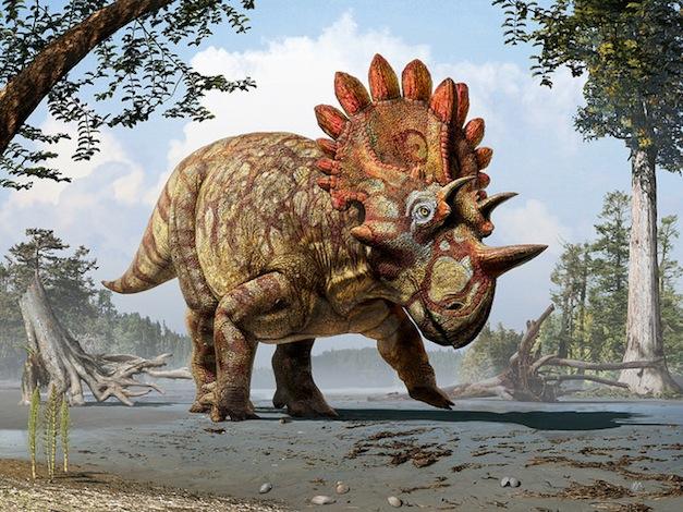Regaliceratops-Artist-Rendering