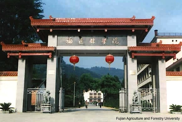 Fujian-Agriculture-Forestry-University