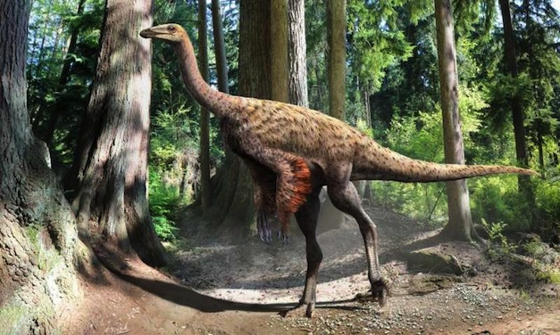 Ornithomimus-Artist-Illustration