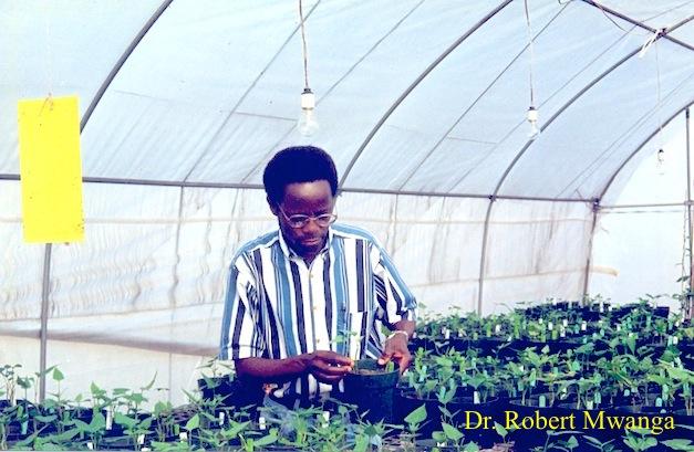 Dr-Robert-Mwanga-Food-Prize